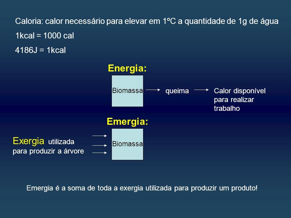 Caloria: calor necessário para elevar em 1ºC a quantidade de 1g de água 1kcal = 1000 cal 4186J = 1kcal Biomassa queimaCalor disponível para realizar trabalho Exergia utilizada para produzir a árvore Energia: Emergia: Emergia é a soma de toda a exergia utilizada para produzir um produto.