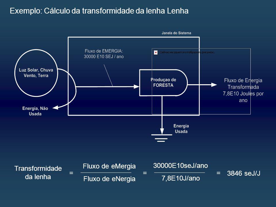 Exemplo: Cálculo da transformidade da lenha Lenha Transformidade da lenha = Fluxo de eMergia Fluxo de eNergia = 30000E10seJ/ano 7,8E10J/ano = 3846 seJ/J