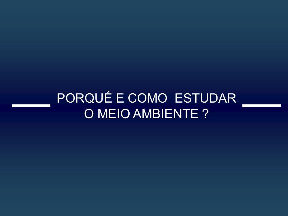 PRODUÇÃO AMBIENTAL DE ENERGIA E EMERGIA