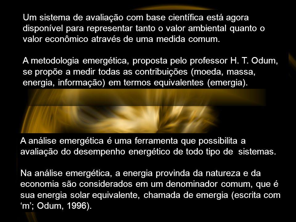 A riqueza real pode ser medida pelo trabalho previamente realizado (emergia), e não pela teoria da energia tradicional.