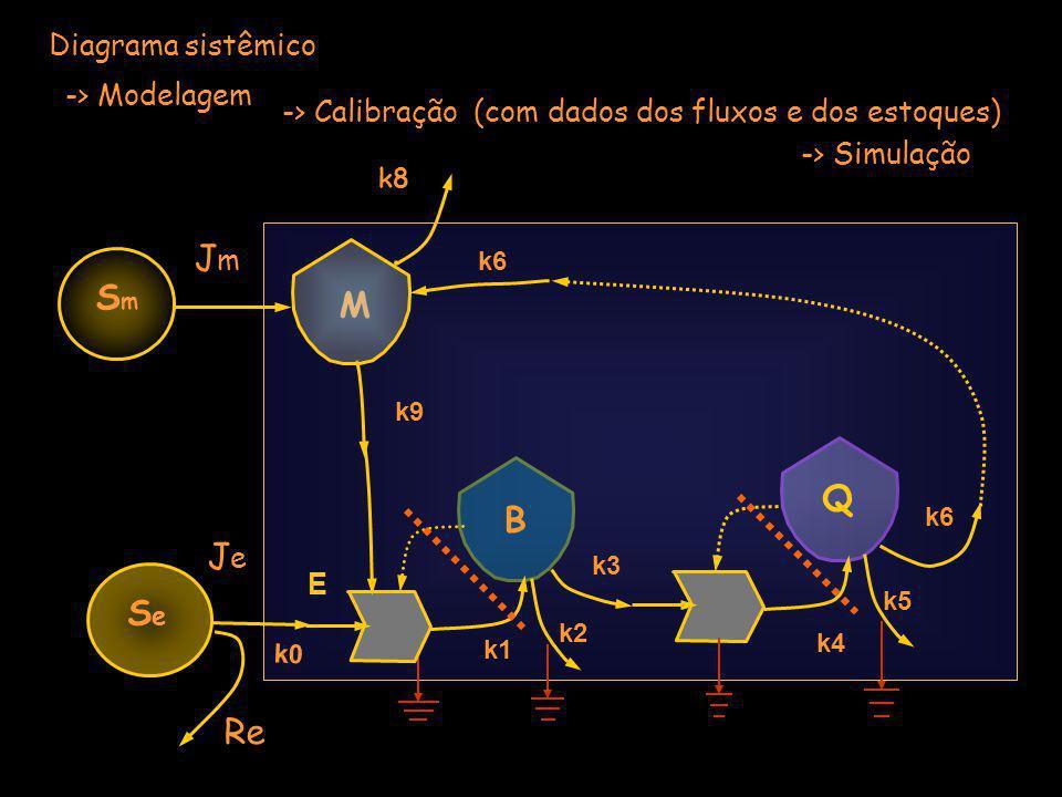 JeJe Equações dos balanços dos estoques e das fontes Q B SeSe DQ/DT = + k4*Q*B – k5*Q - k6*Q k8 k6 k0 M SmSm JmJm Re E = Je / (1 + k0*E*M) E = Je – k0 EM E = Je – Re DB/DT = + k1*E*M*B – k2*B –k3*B k1 k2 k3 k9 k4 k5 k6 DM/DT = + Jm + k6*Q – k8*M –k9*M E
