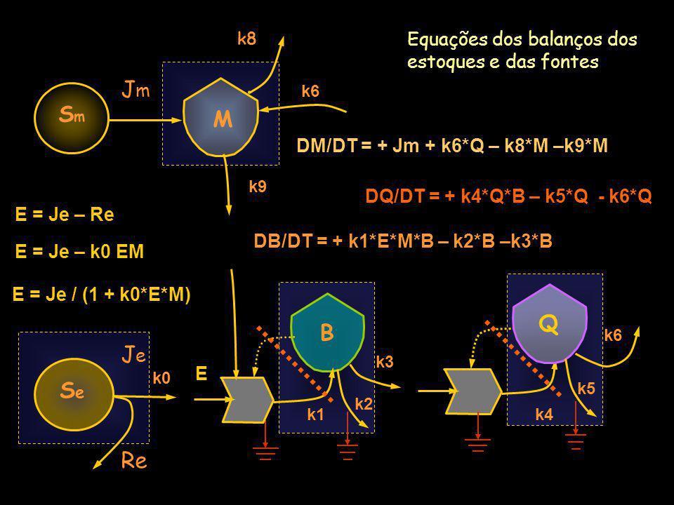 JeJe Equações dos balanços em torno dos estoques e das fontes Q B SeSe DQ/DT = + k4*Q*B – k5*Q - k6*Q k8 k6 k0 M SmSm JmJm Re E = Je / (1 + k0*E*M) E = Je – k0 EM E = Je – Re DB/DT = + k1*E*M*B – k2*B –k3*B k1 k2 k3 k9 k4 k5 k6 DM/DT = + Jm + k6*Q – k8*M –k9*M E