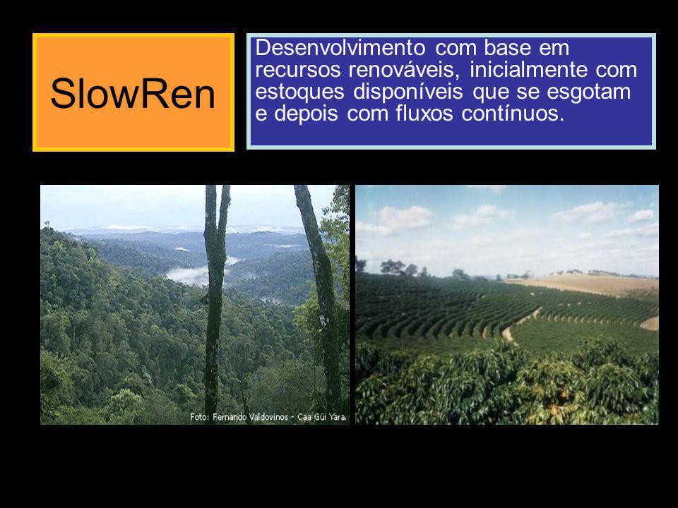 SlowRen J Fonte de energia externa limitada Interação de consumo Estoque de formação lenta Q E S DE/DT = + J – k4*E -k0*E*Q DQ/DT = + k1*E*Q – k3*Q k4E -k0*E*Q + k1*E*Q – k3*Q