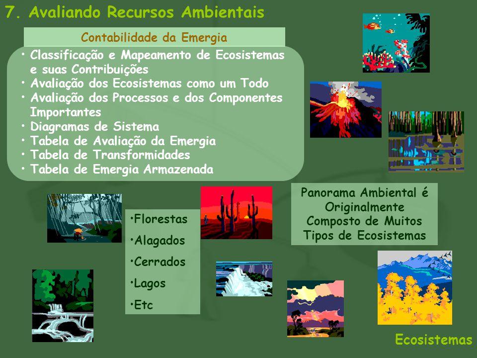 7. Avaliando Recursos Ambientais Ecosistemas Panorama Ambiental é Originalmente Composto de Muitos Tipos de Ecosistemas Florestas Alagados Cerrados La