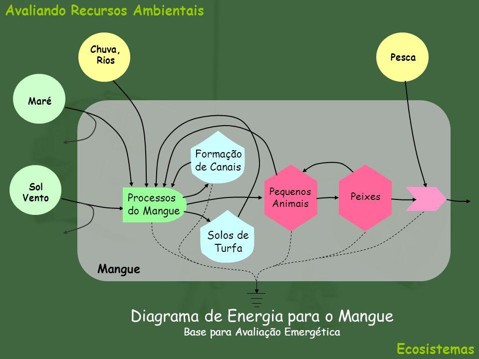 Avaliando Recursos Ambientais Mangue Formação de Canais Processos do Mangue Sol Vento Pequenos Animais Chuva, Rios Diagrama de Energia para o Mangue B