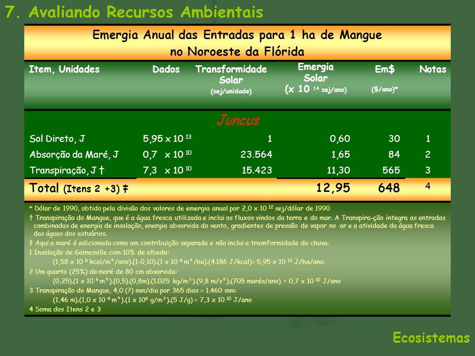 7. Avaliando Recursos Ambientais Ecosistemas Emergia Anual das Entradas para 1 ha de Mangue no Noroeste da Flórida Item, UnidadesDadosTransformidade S