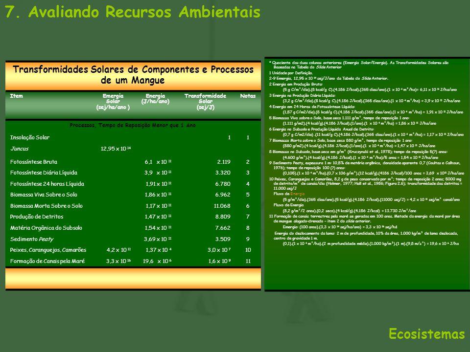7. Avaliando Recursos Ambientais Ecosistemas Transformidades Solares de Componentes e Processos de um Mangue ItemEmergia Solar (sej/ha/ano ) Energia (