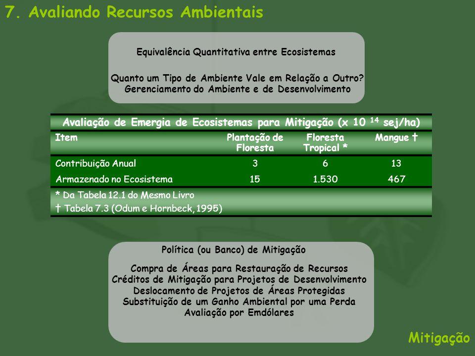 7. Avaliando Recursos Ambientais Mitigação Avaliação de Emergia de Ecosistemas para Mitigação (x 10 14 sej/ha) ItemPlantação de Floresta Floresta Trop