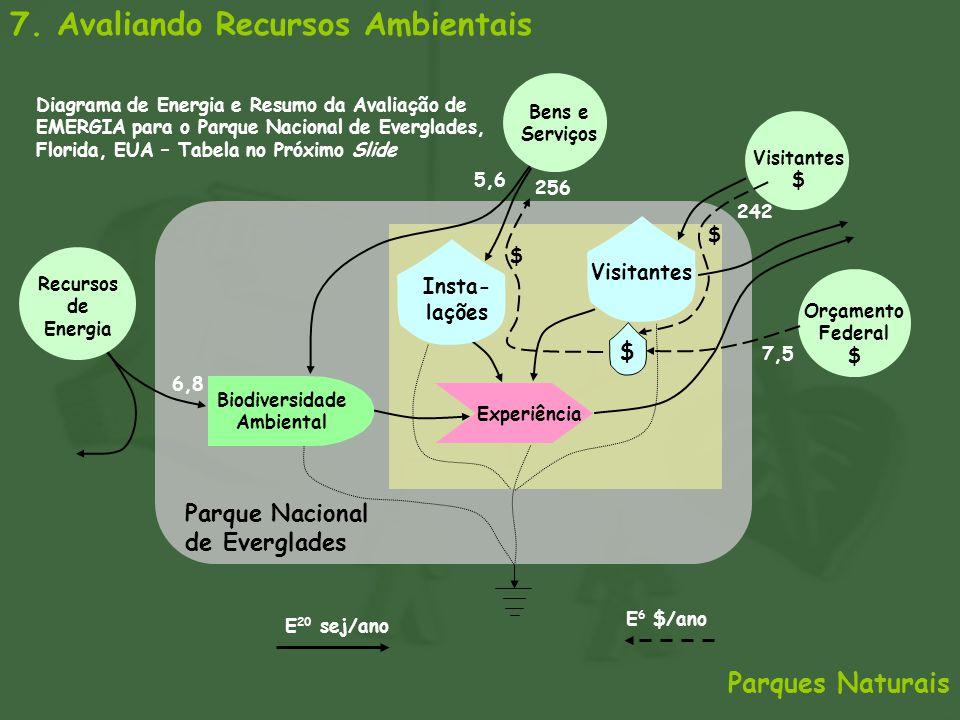 7. Avaliando Recursos Ambientais Parques Naturais Parque Nacional de Everglades Recursos de Energia Visitantes $ Insta- lações Biodiversidade Ambienta