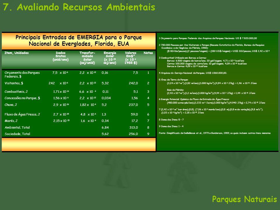 7. Avaliando Recursos Ambientais Principais Entradas de EMERGIA para o Parque Nacional de Everglades, Florida, EUA Item, UnidadesDados Brutos (unid/an