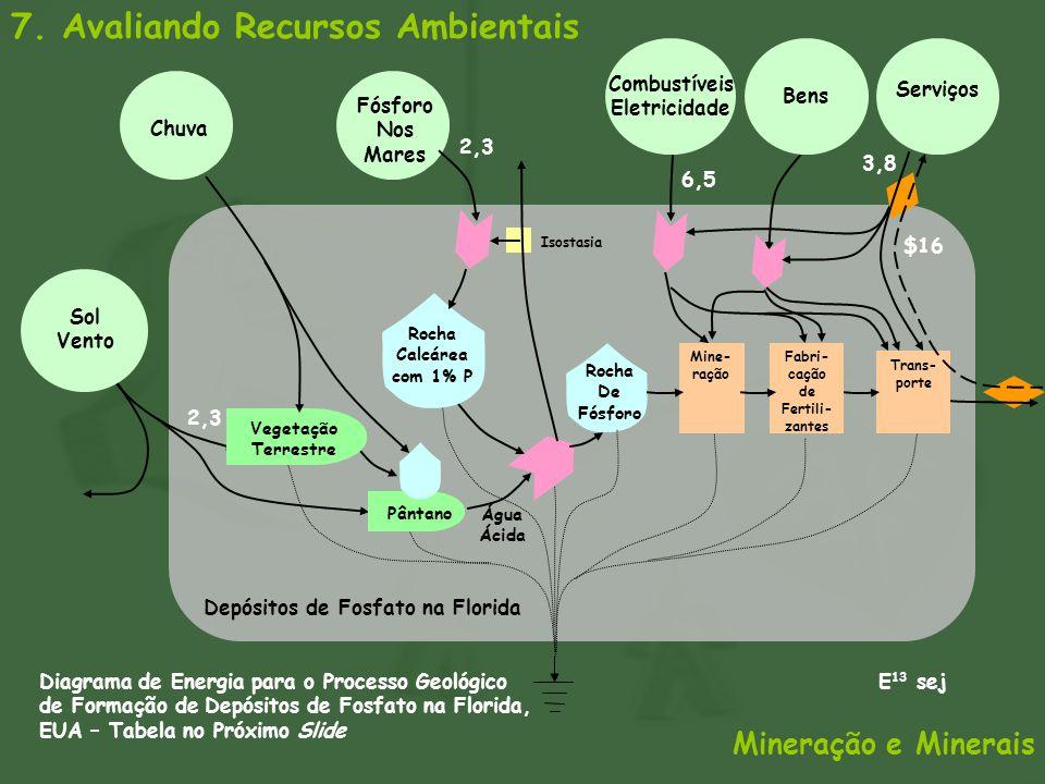 7. Avaliando Recursos Ambientais Mineração e Minerais Depósitos de Fosfato na Florida Sol Vento Fósforo Nos Mares Rocha De Fósforo Vegetação Terrestre