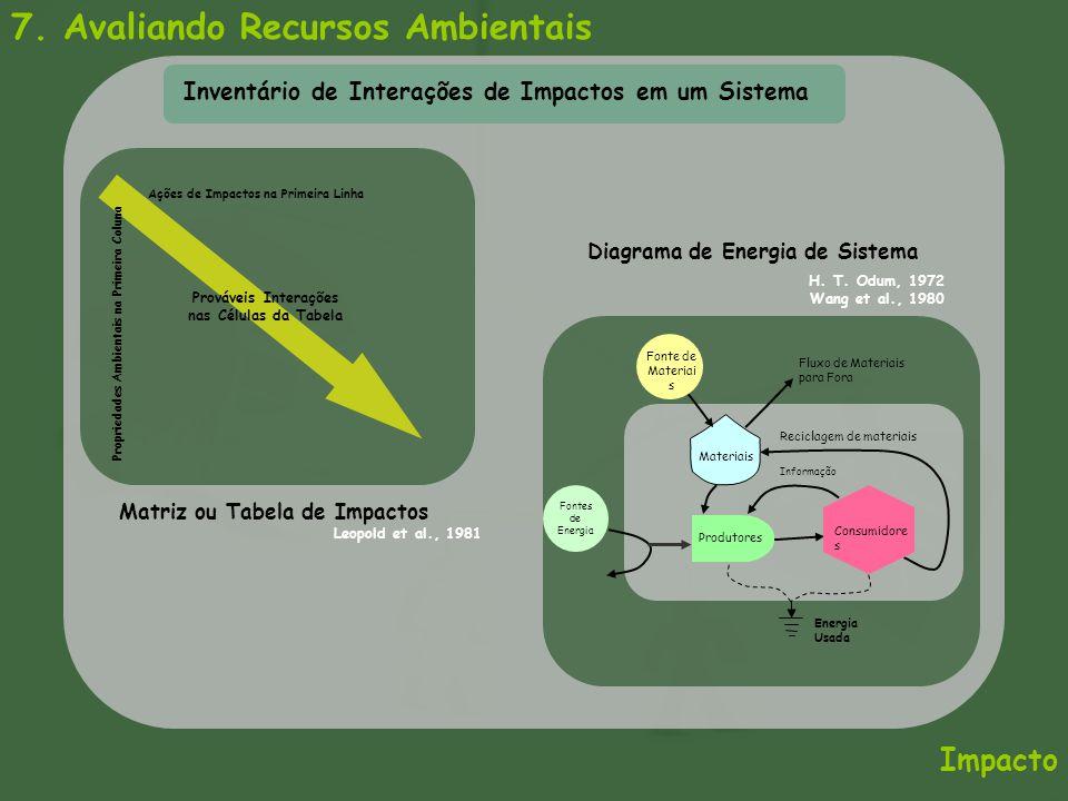 7. Avaliando Recursos Ambientais Impacto Inventário de Interações de Impactos em um Sistema Ações de Impactos na Primeira Linha Prováveis Interações n