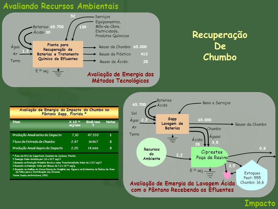 Avaliando Recursos Ambientais Ciprestes Poça de Resina Recursos do Ambiente Estoques Peat: 555 Chumbo: 16,6 Impacto Planta para Recuperação de Bateria