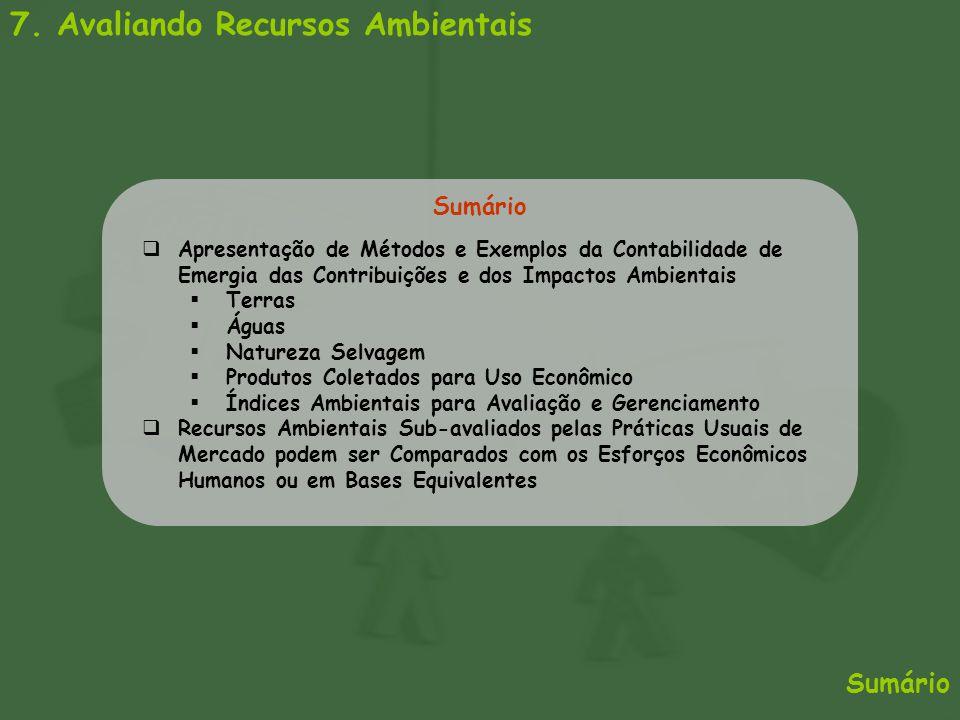7. Avaliando Recursos Ambientais Sumário  Apresentação de Métodos e Exemplos da Contabilidade de Emergia das Contribuições e dos Impactos Ambientais