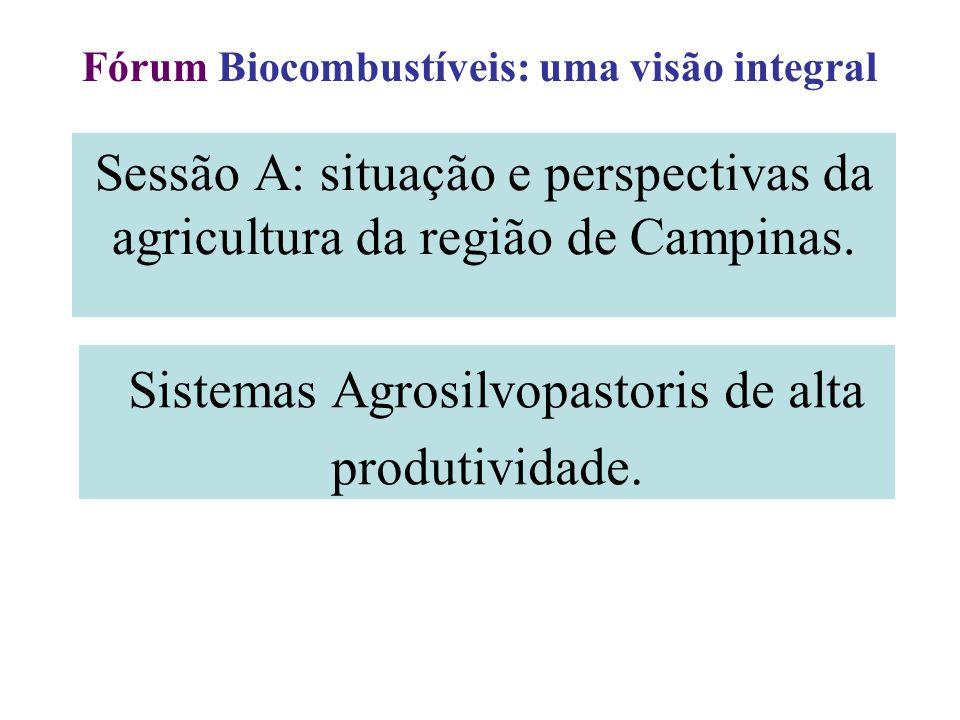 Sistemas Agrosilvopastoris de alta produtividade. Sessão A: situação e perspectivas da agricultura da região de Campinas. Fórum Biocombustíveis: uma v