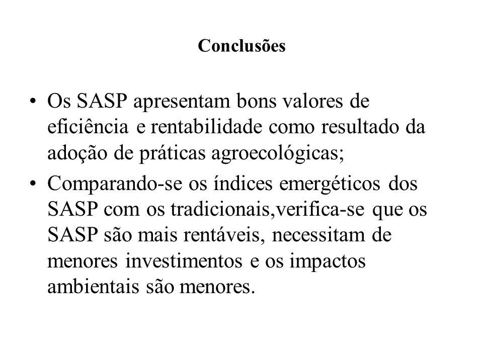 Conclusões Os SASP apresentam bons valores de eficiência e rentabilidade como resultado da adoção de práticas agroecológicas; Comparando-se os índices emergéticos dos SASP com os tradicionais,verifica-se que os SASP são mais rentáveis, necessitam de menores investimentos e os impactos ambientais são menores.