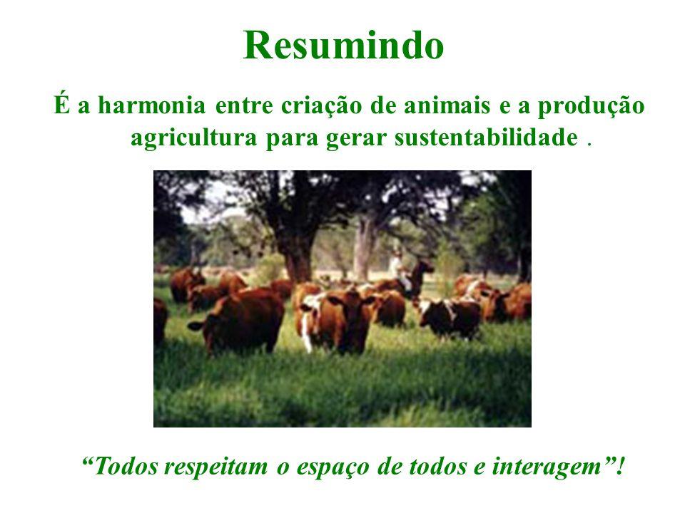 """Resumindo É a harmonia entre criação de animais e a produção agricultura para gerar sustentabilidade. """"Todos respeitam o espaço de todos e interagem""""!"""