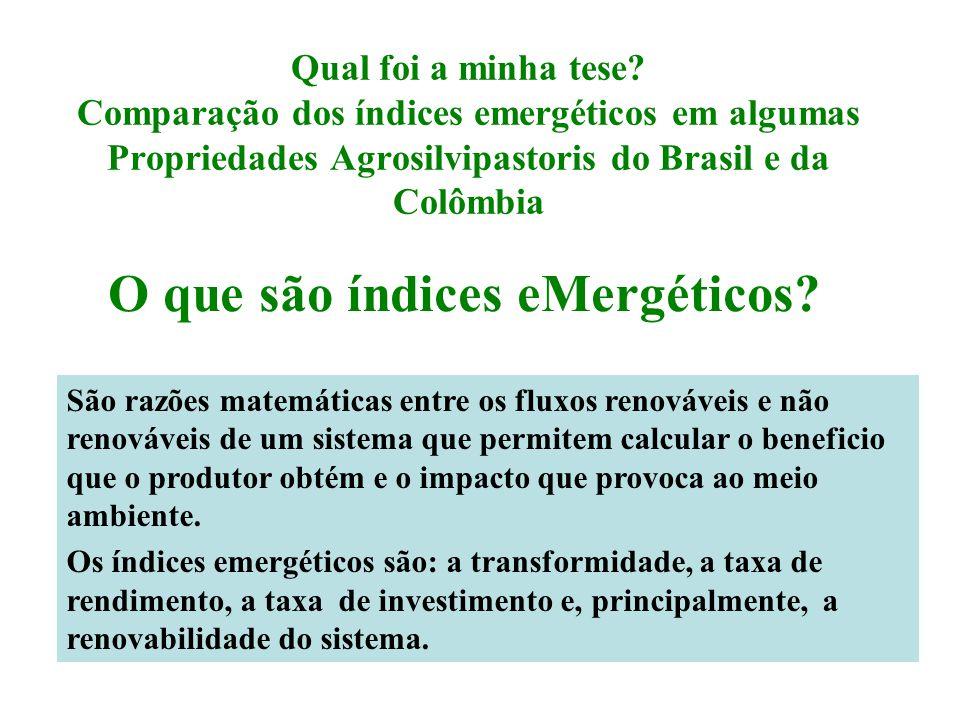 Qual foi a minha tese? Comparação dos índices emergéticos em algumas Propriedades Agrosilvipastoris do Brasil e da Colômbia O que são índices eMergéti