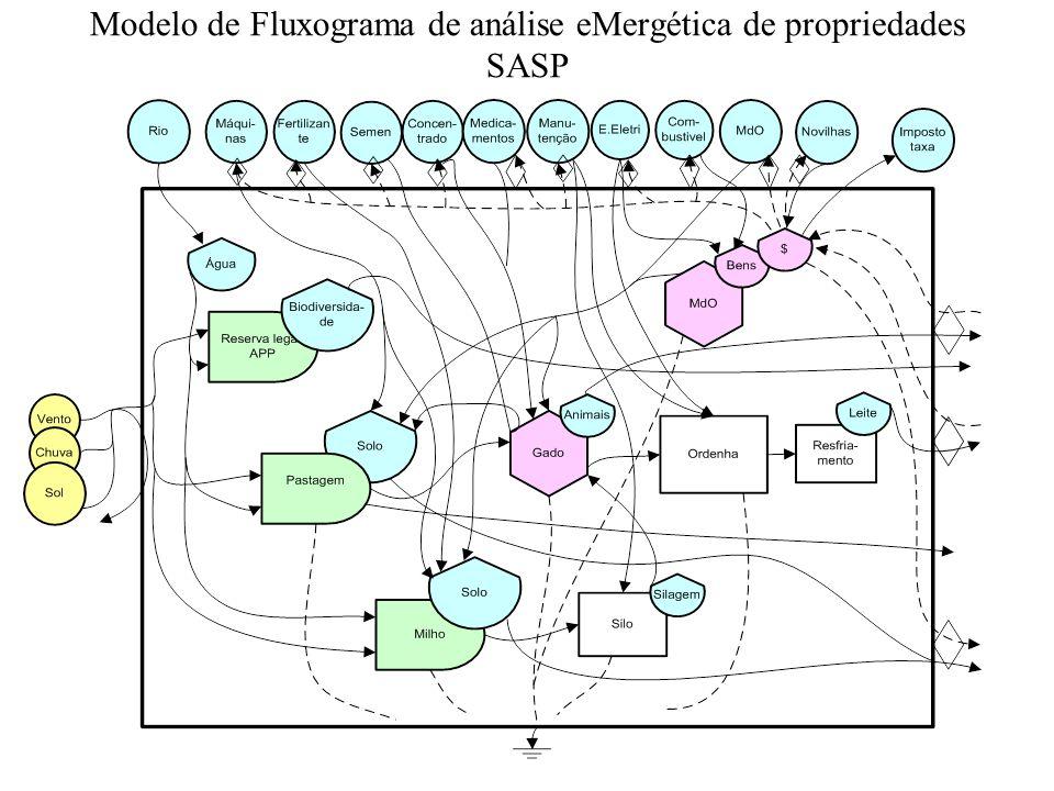 Modelo de Fluxograma de análise eMergética de propriedades SASP