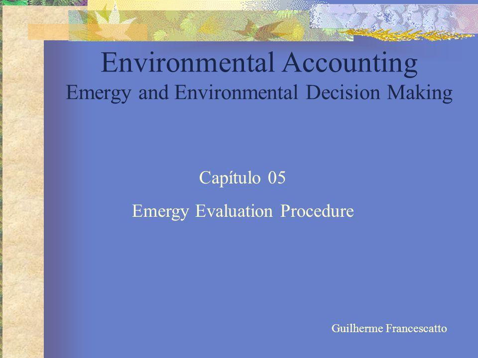 PROCEDIMENTOS DE AVALIAÇÃO EMERGÉTICA Ocorre em 3 etapas:  Construção do Diagrama de Sistemas;  Construção da Tabela de Avaliação Emergética;  Cálculo de Índices Emergéticos;
