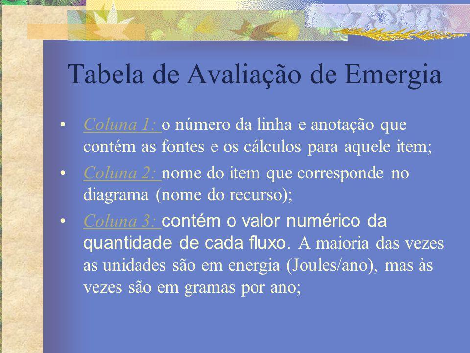 Tabela de Avaliação de Emergia Coluna 1: o número da linha e anotação que contém as fontes e os cálculos para aquele item;Coluna 1: Coluna 2: nome do