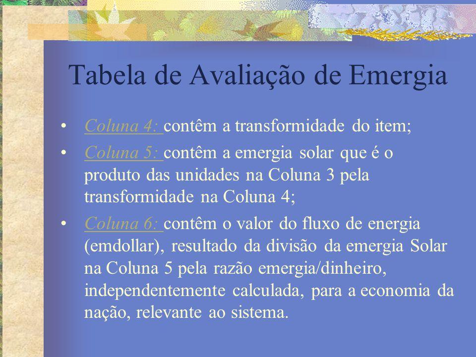Tabela de Avaliação de Emergia Coluna 4: contêm a transformidade do item;Coluna 4: Coluna 5: contêm a emergia solar que é o produto das unidades na Co