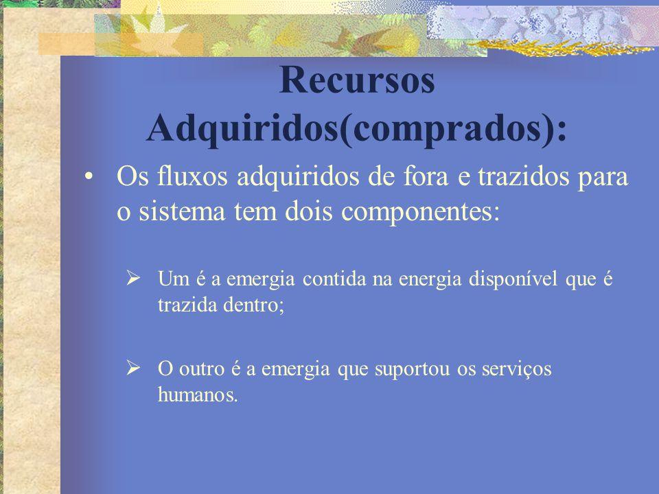 Recursos Adquiridos(comprados): Os fluxos adquiridos de fora e trazidos para o sistema tem dois componentes:  Um é a emergia contida na energia dispo