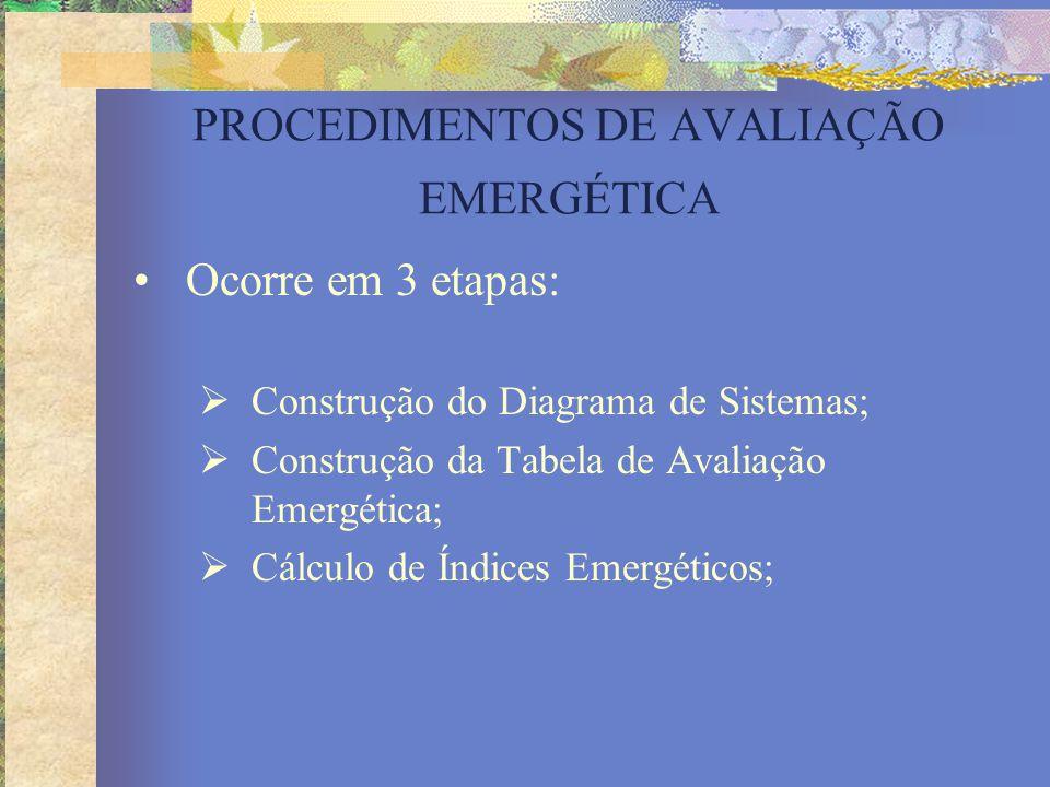 PROCEDIMENTOS DE AVALIAÇÃO EMERGÉTICA Ocorre em 3 etapas:  Construção do Diagrama de Sistemas;  Construção da Tabela de Avaliação Emergética;  Cálc