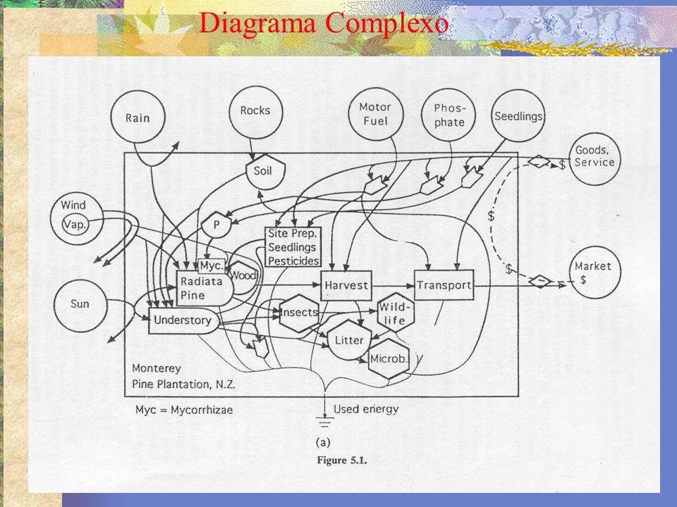 Diagrama Complexo