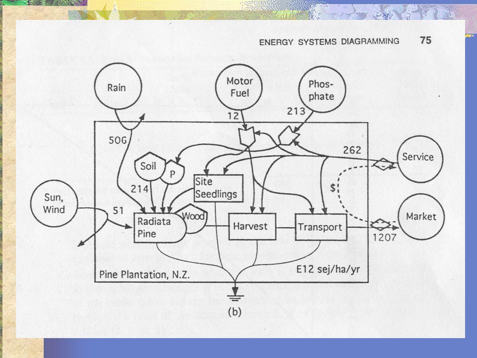 Índices Emergéticos Taxa de Investimentos (EIR): é obtido através da divisão dos recursos da economia (F) pelos recursos provenientes da natureza (I); EIR = F/I (Mn+Sn)/(R+Mr+Sr+N) Mn: mateirais; Sn: Serviços; R: Renováveis Mr: fluxo emergético materiais ; Sr: Fluxo emergético serviços; N: não renováveis