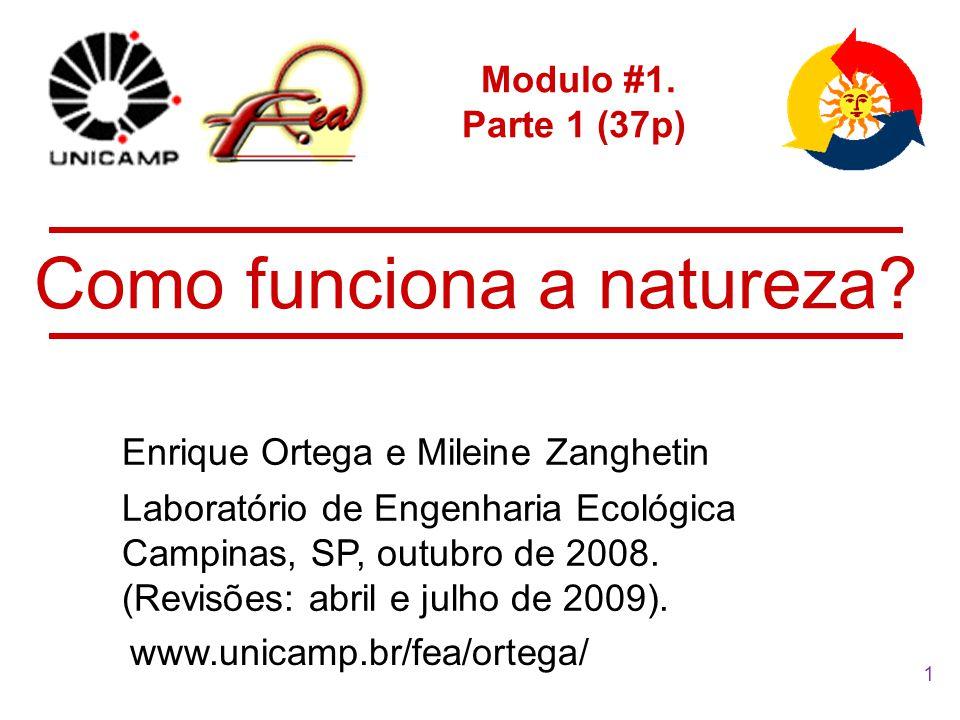 1 Modulo #1.Parte 1 (37p) Enrique Ortega e Mileine Zanghetin Como funciona a natureza.