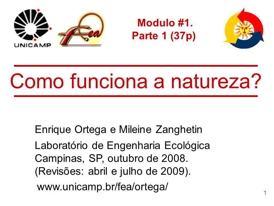 1 Modulo #1. Parte 1 (37p) Enrique Ortega e Mileine Zanghetin Como funciona a natureza? Laboratório de Engenharia Ecológica Campinas, SP, outubro de 2