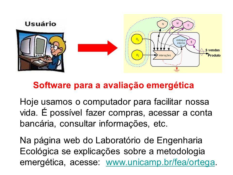 Hoje usamos o computador para facilitar nossa vida. É possível fazer compras, acessar a conta bancária, consultar informações, etc. Software para a av
