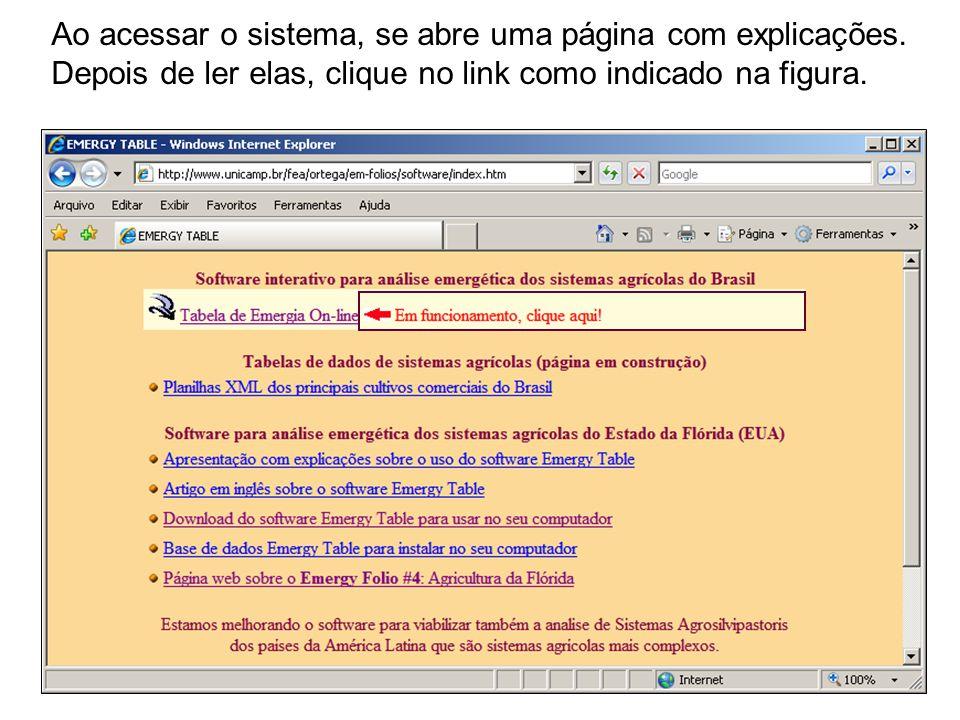 Ao acessar o sistema, se abre uma página com explicações. Depois de ler elas, clique no link como indicado na figura.