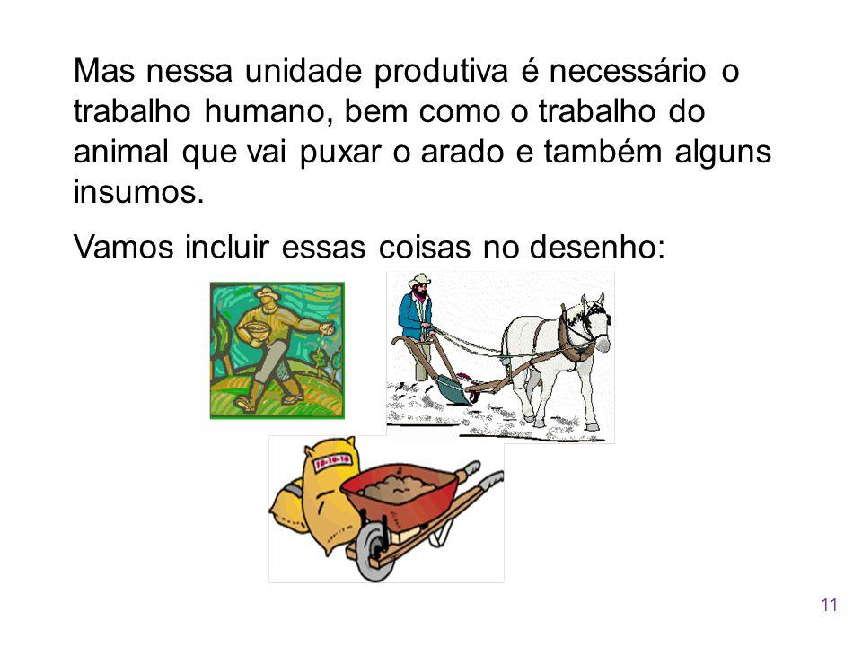 Mas nessa unidade produtiva é necessário o trabalho humano, bem como o trabalho do animal que vai puxar o arado e também alguns insumos. Vamos incluir