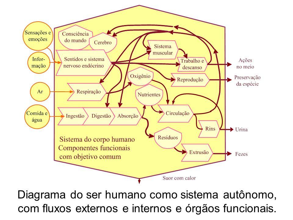 Diagrama do ser humano como sistema autônomo, com fluxos externos e internos e órgãos funcionais.