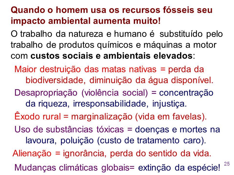 Quando o homem usa os recursos fósseis seu impacto ambiental aumenta muito! Maior destruição das matas nativas = perda da biodiversidade, diminuição d