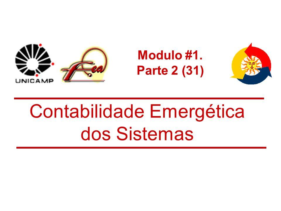 Modulo #1. Parte 2 (31) Contabilidade Emergética dos Sistemas