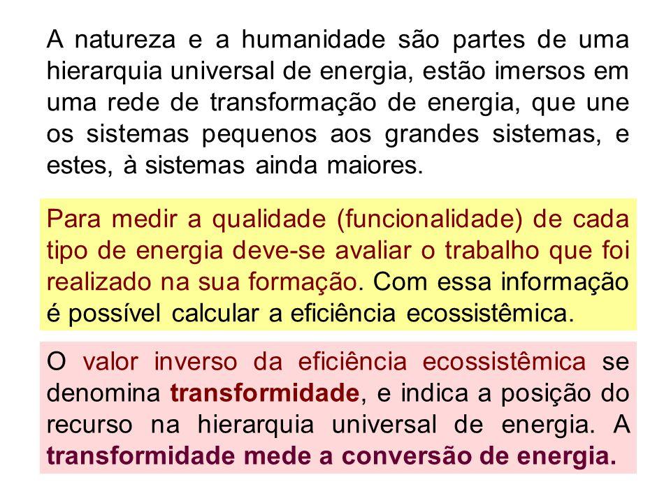 A natureza e a humanidade são partes de uma hierarquia universal de energia, estão imersos em uma rede de transformação de energia, que une os sistema