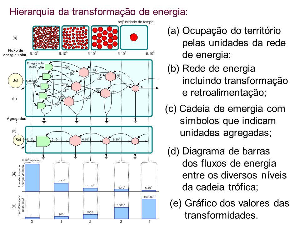 Hierarquia da transformação de energia: (a) Ocupação do território pelas unidades da rede de energia; (b) Rede de energia incluindo transformação e retroalimentação; (c) Cadeia de emergia com símbolos que indicam unidades agregadas; (d) Diagrama de barras dos fluxos de energia entre os diversos níveis da cadeia trófica; (e) Gráfico dos valores das transformidades.