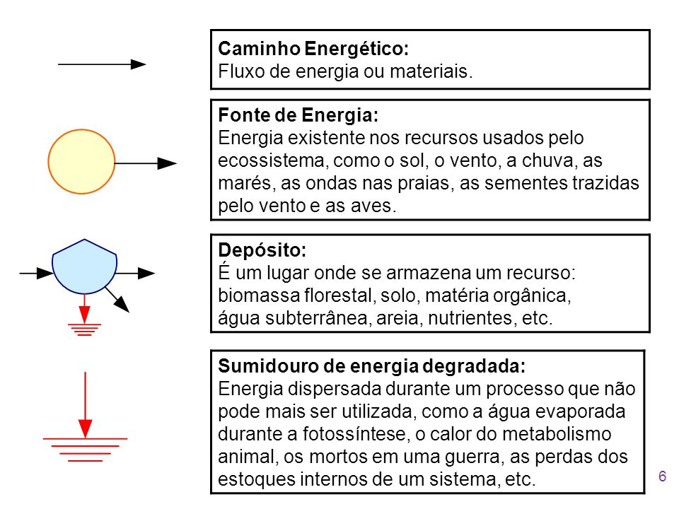 Caminho Energético: Fluxo de energia ou materiais. Fonte de Energia: Energia existente nos recursos usados pelo ecossistema, como o sol, o vento, a ch