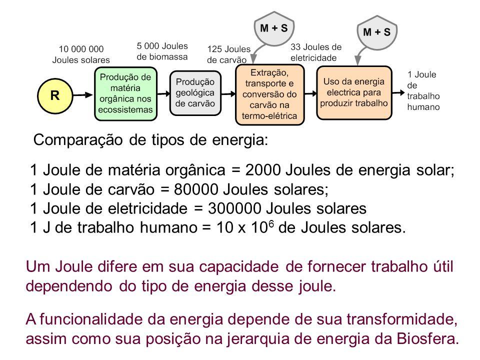 Comparação de tipos de energia: 1 Joule de matéria orgânica = 2000 Joules de energia solar; 1 Joule de carvão = 80000 Joules solares; 1 Joule de eletricidade = 300000 Joules solares 1 J de trabalho humano = 10 x 10 6 de Joules solares.
