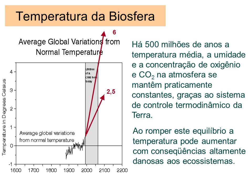 Temperatura da Biosfera Há 500 milhões de anos a temperatura média, a umidade e a concentração de oxigênio e CO 2 na atmosfera se mantêm praticamente