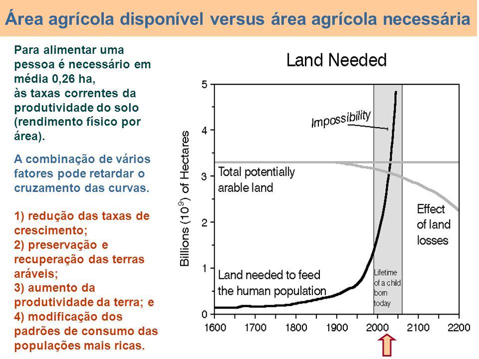 Para alimentar uma pessoa é necessário em média 0,26 ha, às taxas correntes da produtividade do solo (rendimento físico por área). Área agrícola dispo