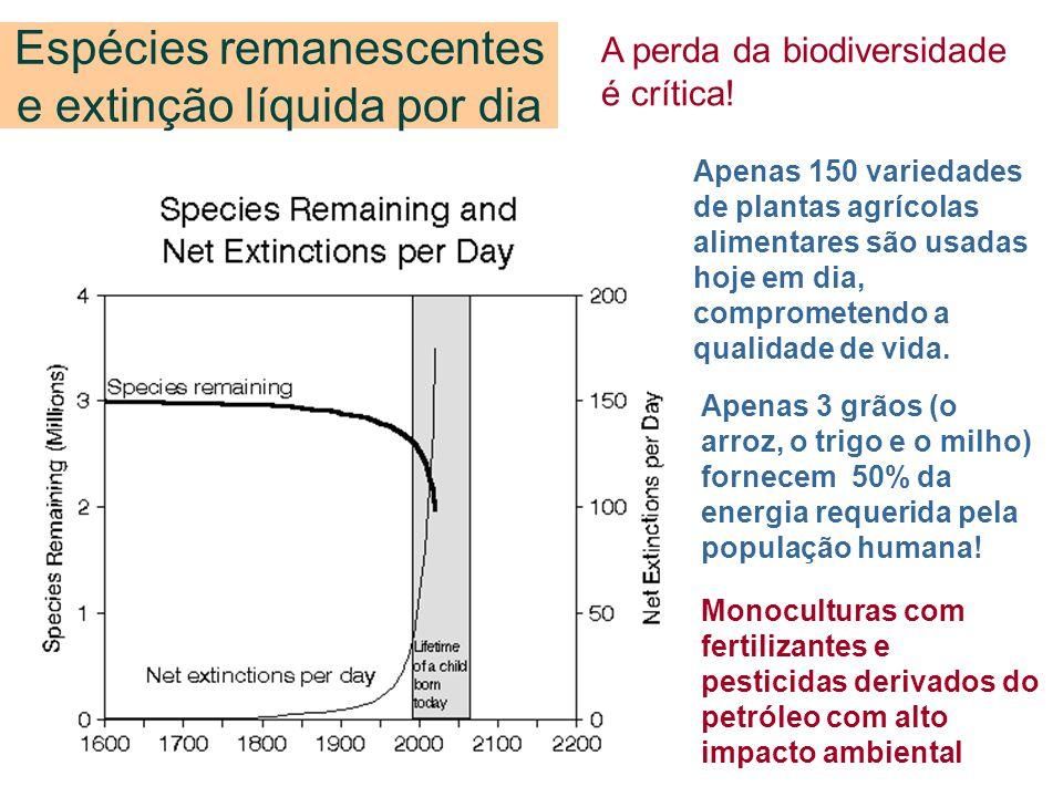 Espécies remanescentes e extinção líquida por dia A perda da biodiversidade é crítica! Apenas 150 variedades de plantas agrícolas alimentares são usad