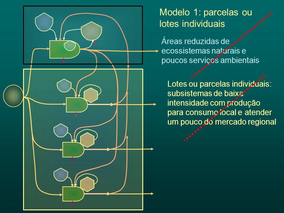 Lotes ou parcelas individuais: subsistemas de baixa intensidade com produção para consumo local e atender um pouco do mercado regional Áreas reduzidas