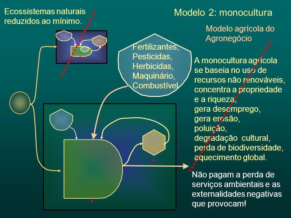 A monocultura agrícola se baseia no uso de recursos não renováveis, concentra a propriedade e a riqueza, gera desemprego, gera erosão, poluição, degra