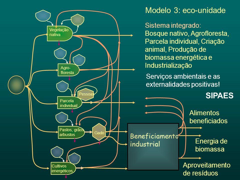 Beneficiamento industrial Sistema integrado: Bosque nativo, Agrofloresta, Parcela individual, Criação animal, Produção de biomassa energética e Indust