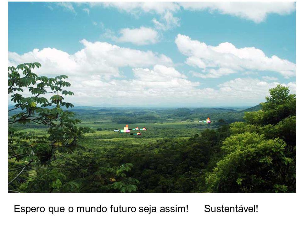 Espero que o mundo futuro seja assim!Sustentável!