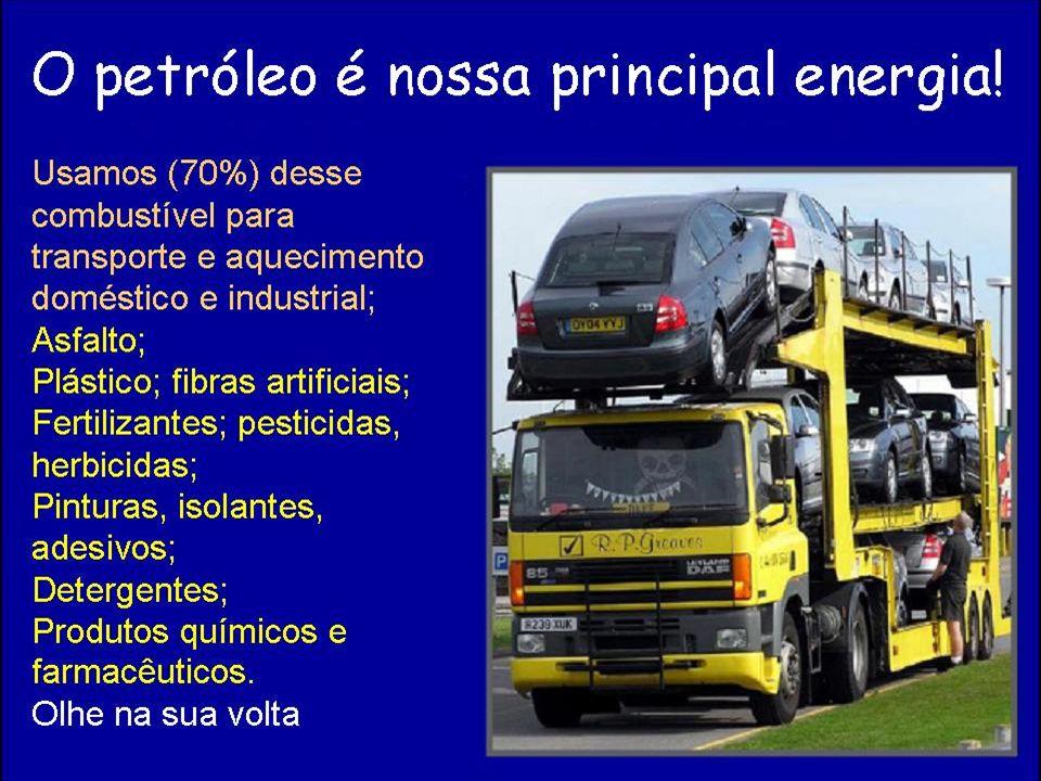 Área de produção de alimentos e biocombustíveis para o mercado regional Ecossistemas naturais (serviços ambientais) Exemplos de Modelos de produção
